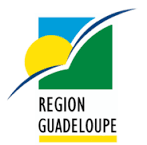 Easy-Delivery livre en Guadeloupe